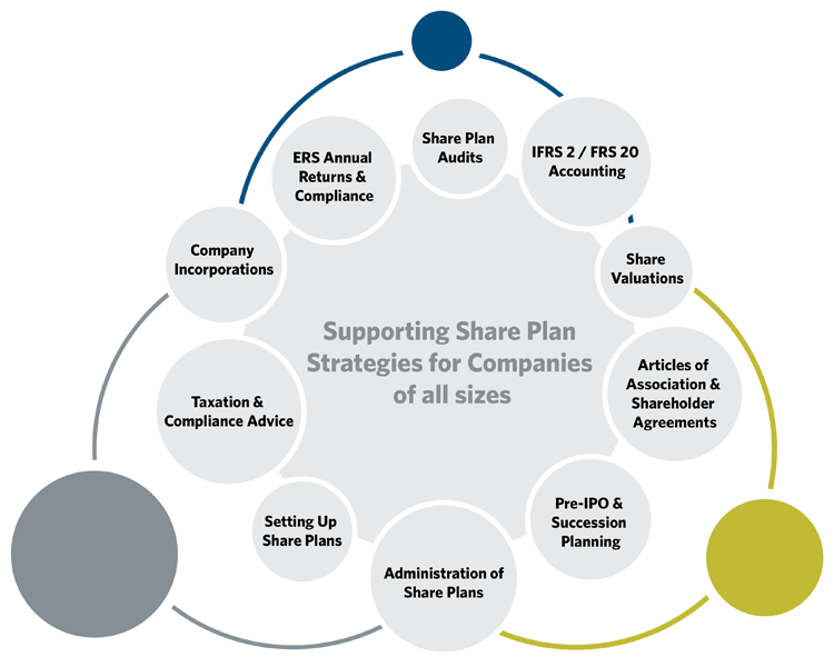 Supporting Share Plan Strategies for Companies of all sizes